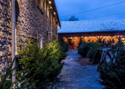 biohof-nagel-arnsberg-wettmarsen-weihnachten-12-2017-32