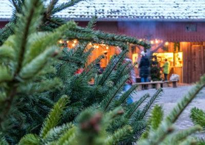 biohof-nagel-arnsberg-wettmarsen-weihnachten-12-2017-47